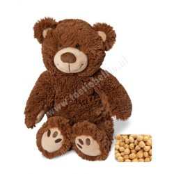 Warming soft toy papa bear with cherry pit pillow